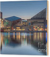Baltimore National Aquarium At Dawn I Wood Print