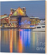 Baltimore National Aquarium At Twilight I Wood Print