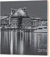 Baltimore National Aquarium At Twilight II Wood Print