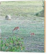 Bambi And The Twins  Wood Print