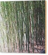 Bamboo By Roadsides Cherry Hill Roadside Greens            Wood Print
