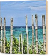 Bamboo Fence Wood Print by Keith Ducker