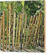 Bamboo Fencing Wood Print by Lilliana Mendez