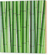 Bamboo Forest Background 2 Wood Print