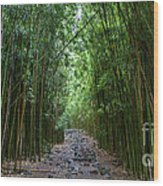 Bamboo Forest Trail Hana Maui Wood Print by Dustin K Ryan