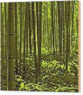 Bamboo Forest Twilight  Wood Print