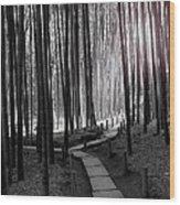 Bamboo Grove At Dusk Wood Print