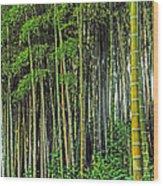 Bamboo Hill Wood Print