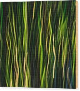 Bamboo In Motion Wood Print