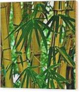 Bamboo Of Hawaii Wood Print