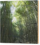 Bamboo Road Wood Print by Aaron Bedell