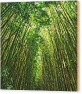Bamboo Sky - The Magical And Mysterious Bamboo Forest Of Maui. Wood Print