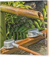 Bamboo Spout Wood Print