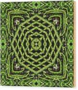 Bamboo Symmetry Wood Print