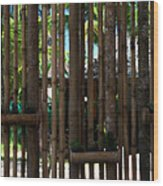 Bamboo View Wood Print