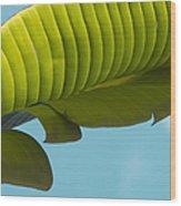 Banana Leaf And Maui Sky Wood Print