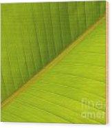 Banana Leaf Diagonal Pattern Close-up Wood Print by Anna Lisa Yoder