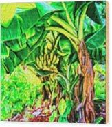 Bananas In Lahaina Maui Wood Print