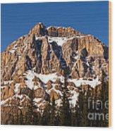 Banff National Park Scenic 1 Wood Print