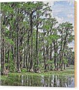 Banks Lake Georgia Wood Print