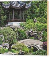 Bansi Garden Wood Print
