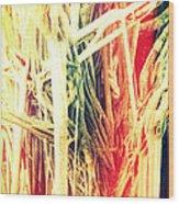 Banyan Tree Wood Print by Chris Andruskiewicz