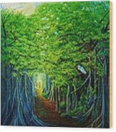 Banyan Walk Wood Print
