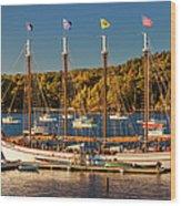 Bar Harbor Schooner Wood Print by Brian Jannsen
