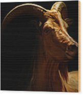 Barbary Sheep Portrait Wood Print by Lourry Legarde