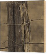 Barbed Wood Print