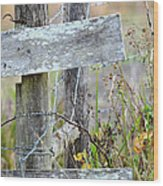 Barbed Fence Wood Print