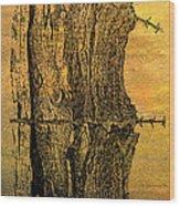 Barbed Life Wood Print