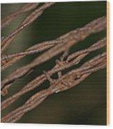 Barbed Wood Print