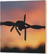 Barbed Silhouette Wood Print