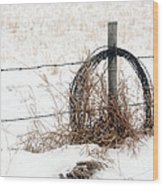 Barbed Wire Fence Post Wood Print