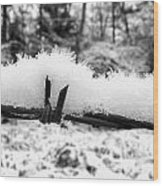 Barbed Wire In Snow Wood Print