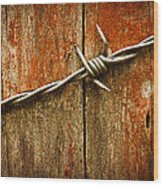 Barbed Wire On Wood Wood Print