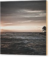 Barbers Point Wood Print by Jason Bartimus