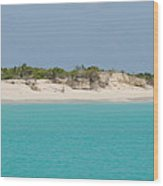 Barbuda Beach And Dunes Wood Print