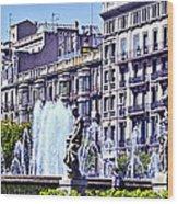 Barcelona Fountain Wood Print