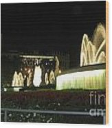Barcelona Fountain Wood Print