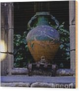 Barcelona Spain Vase Wood Print