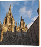 Barcelona's Marvelous Architecture - Cathedral Of The Holy Cross And Saint Eulalia Wood Print