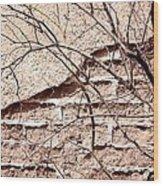 Bare Tree Adobe Wall Wood Print by Joe Kozlowski