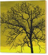 Bare Tree Against Yellow Background E88 Wood Print