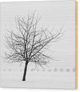 Bare Tree In Winter - Wonderful Black And White Snow Scenery Wood Print