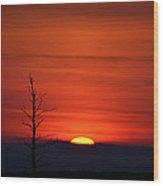 Bare Tree Sunrise Wood Print