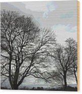 Bare Trees Winter Sky Wood Print