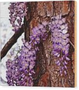 Bark Beauty Wood Print