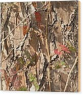 Bark IIi Wood Print